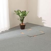 ニトリのカーペットで、春夏秋冬、季節を楽しみましょう♪♪のサムネイル画像